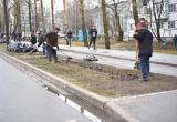 Вологжане активно приводили город в порядок во время общегородского субботника (ФОТО)