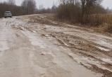 Жители нескольких деревень в Шекснинском районе оказались отрезанными от цивилизации
