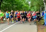 Ради «Зеленого марафона» в центре Вологды перекроют дороги