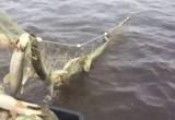 Двух приятелей-вытегоров поймали на браконьерстве в акватории Волго-Балта
