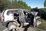 В Чагодощенском районе в лобовом столкновении погиб петербуржец