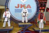 «Каратэ-пацан» из Вологды стал чемпионом Европы