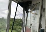 В Череповце спасли енотиху Машу, которая могла упасть с пятого этажа (ФОТО)