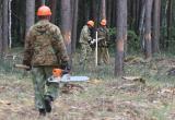 В тотемских лесах искал должника судебный пристав