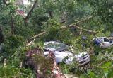 В селе Устье молния пробила автомобиль «Lada Largus»