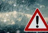 ГУ МЧС предупредило вологжан о грозах, ливнях и сильном ветре