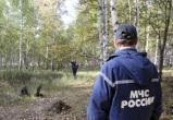 В Чагодощенском районе пошел за грибами и заблудился пенсионер