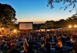 Фестиваль уличного кино пройдет в Вологде