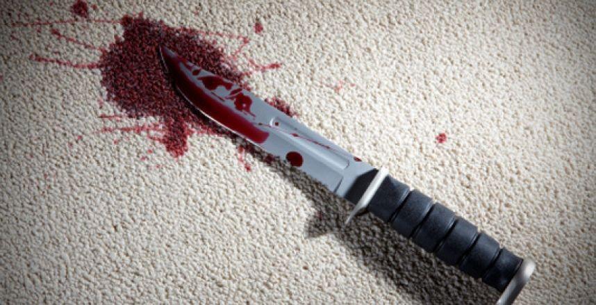 Вологжанин ударил ножом вступившегося замать брата