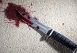 Вологжанин осужден за то, что нанес тяжелые травмы брату