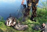 Более 40 тысяч штрафов заплатят рыбаки-браконьеры в Вологодской области