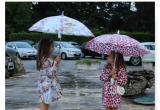 Жара закончилась, впереди - дожди и грозы: прогноз погоды на выходные