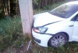 Лось стал причиной ДТП в Устюженском районе: водитель и животное не пострадали
