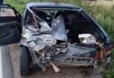 Трое взрослых и ребенок пострадали в результате ДТП в Грязовецком районе