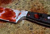 Сотрудники полиции задержали подозреваемого в убийстве жителя Ярославля, труп которого был найден на детской площадке в Вологде