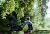 18 дней выживания: житель Мурманска навсегда запомнит поход в вологодский лес