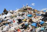 ОНФ: Бабушкинский, Грязовецкий и Череповецкий районы не ликвидируют незаконные свалки, а занимаются отписками