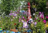 Более 88 заявок поступило на участие в конкурсе «Цветущий город»