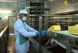 В Вологде растут цены на молочные продукты, мясо и хлеб пока не подорожали