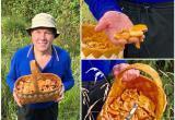 Губернатор Вологодской области Олег Кувшинников сходил по грибы и набрал корзину рыжиков
