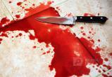 Ревнивый убийца в Вологодской области перерезал горло сожительнице