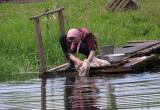 В Вологодской области утонула 87-летняя бабушка: Очевидцы не смогли её спасти