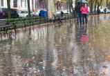 Прогноз погоды до середины недели в Вологде: резкое похолодание, слякоть ежедневный дождь