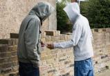 Двух юных наркодилеров – крупнейших поставщиков «синтетики» задержали в Вологде