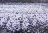 На Вологодчине выпал первый снег (ФОТО)