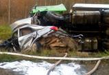 Смертельное ДТП в Вологодской области: Трое погибших людей и один мертвый доберман (ФОТО)