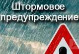 ВНИМАНИЕ! в Вологде шквалистый ветер