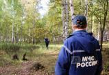 Вологжанка два раза терялась в одном и том же лесу: Оба раза благополучно нашлась