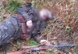 """Трагедия """"пьяной охоты"""": В Вологодской области охотник убил друга вместо лося"""
