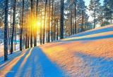 Прогноз на Новый год в России озвучили метеорологи