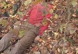 Следователям СК удалось раскрыть преступление 2003 года: Труп изрезанного вологжанина был найден на даче в Доронино