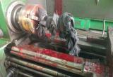 Труп иностранца с отрезанной головой обнаружили в Вологодской области