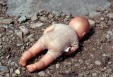 Слухи о растерзанном младенце на вологодской свалке наполнили соцсети (ФОТО)