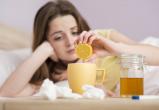 3 тысячи жителей Вологды заболели гриппом и ОРВИ и это только за неделю