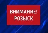 ВНИМАНИЕ! ГИБДД разыскивает автомобиль, который сбил семью в Шекснинском районе