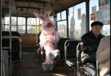 В автобусах Вологды с 5 февраля объявят «охоту на зайцев»