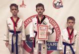 Юные тхэквондисты из Вологды завоевали 7 медалей на турнире в Москве
