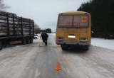 Школьный автобус столкнулся с лесовозом: 15-летняя вологжанка пострадала в ДТП