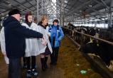 Проект по агробизнес-образованию стартовал под Вологдой