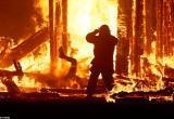 Ночью под Кирилловом в собственном доме сгорел заживо местный житель