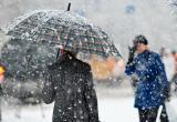 Вологжан накроет мокрым снегом и дождем