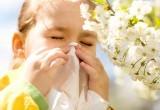 Поллиноз: как избежать опасной весенней аллергии?