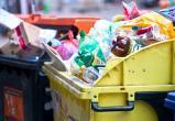 Вологжане готовы доработать «мусорный» закон
