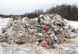 Череповецкому бизнесмену грозит штраф за то, что выгрузил мусор на землю