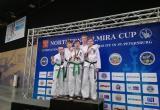 Юные тхэквондисты из Вологды вновь привезли охапку медалей с международного турнира