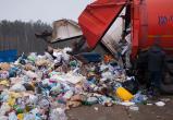 Бдительные вологжане «поймали» мусоровозы, сваливающие отходы в лесу